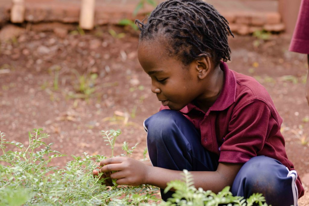 MLC-Prep-School-Nairobi-Kenya